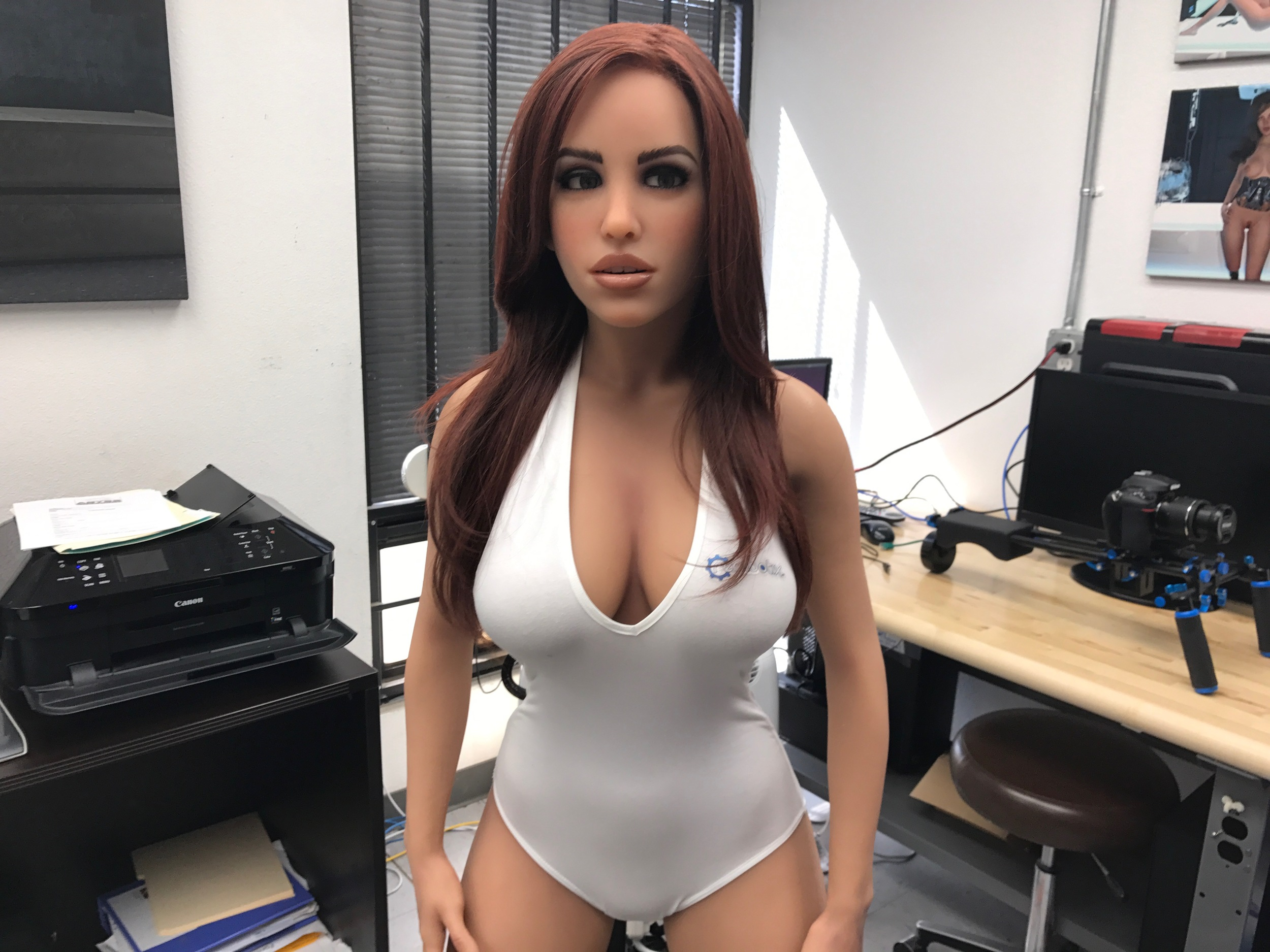 Sex robots in use